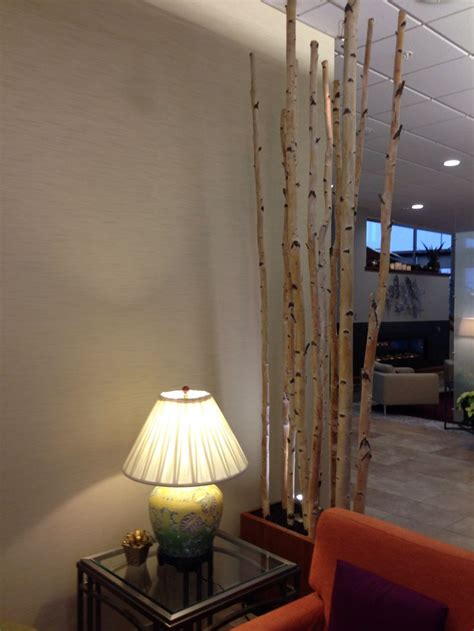 images  birch decor  pinterest trees