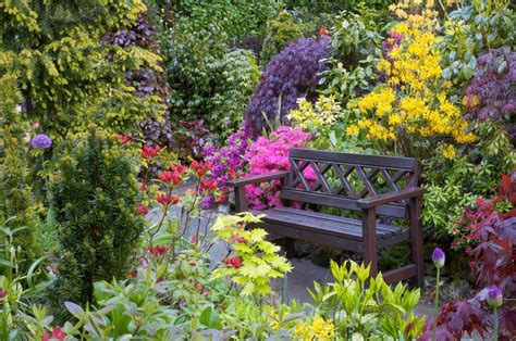 spring flower garden spring bench beautiful bench flowers garden spring 149331