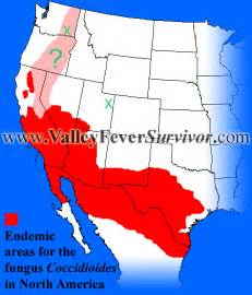 valley fever map california valley fever ike davis likely has valley fever mets