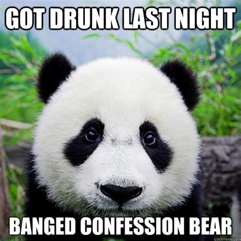 Drunk Panda Meme - drunk panda meme tumblr panda best of the best memes