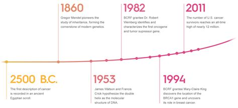 Pdf History Of Breast Cancer Research by Why Research Breast Cancer Research Foundation