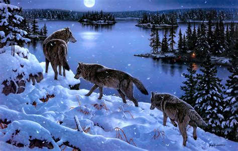 computer wallpaper pack wolf pack wallpapers wallpaper cave