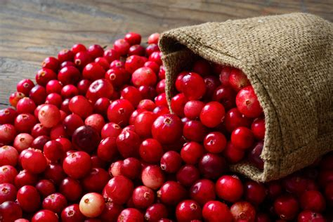 Fitness Barre Cranberry 2 by Health Benefits Of Cranberries Fitness