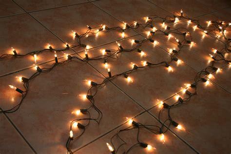 The Best Exterior String Lights Ideas   HomesFeed