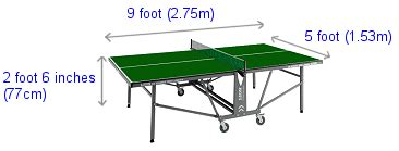 table tennis dimensions professional table tennis players related keywords professional table tennis players