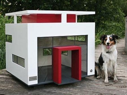 house of dog called ultra modern dog house menagerie pinterest