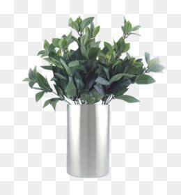 tanaman  gratis karangan bunga lukisan cat air