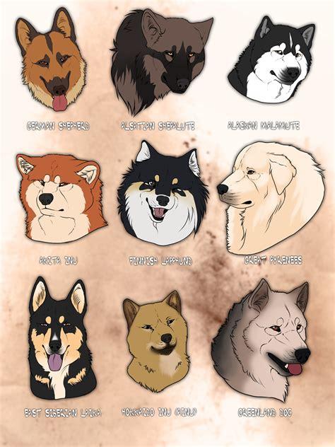 My Favorite dog breeds by Grypwolf on DeviantArt