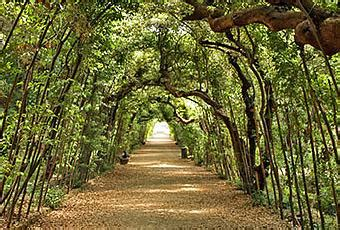 giardini in città splendidi giardini in citt 224 paperblog