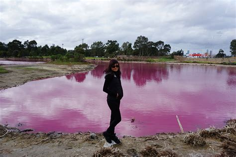 pink lake melbourne the pink lake westgate park melbourne by ozventurer