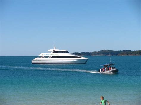 boat cruise whitsundays camira at whitehaven beach picture of cruise whitsundays