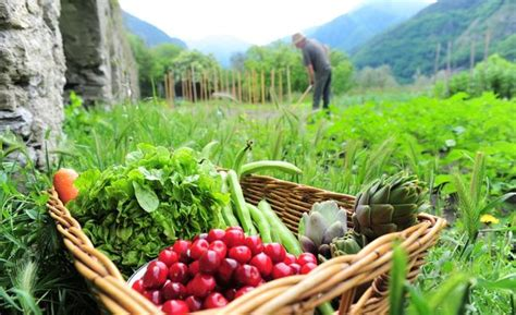 Beauty Salon Decor How Biodiversity Saves Food Crops All 4 Women