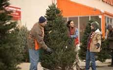 home depot christmas tree delivery how to make a branch tree at the home depot