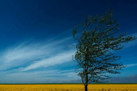 Landscape Photography Horizon Line Photographic Challenges Horizon Depth And Axes In