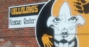 Tia torres help the villalobos rescue center