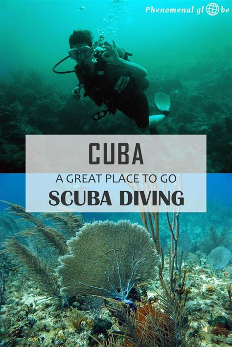 dive certification 25 best ideas about scubas on diving scuba