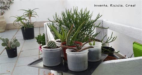 vasi per piante aromatiche vasi per piante fai da te con le fuscelle per formaggio