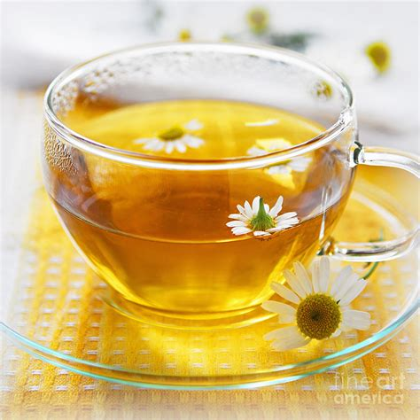 Teh Camomile chamomile gift from nature secretly healthy