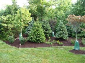 Landscape Pictures Of Trees Landscaping With Grass Trees Adorable Landscaping Trees