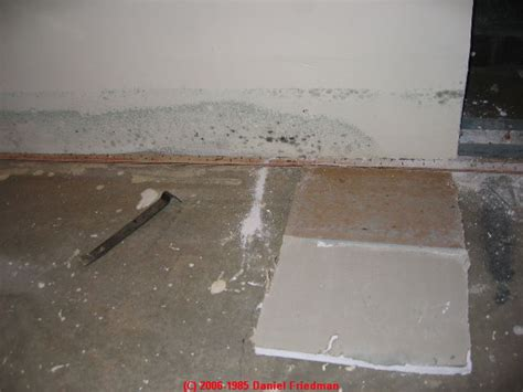 green mold in basement auto forward to correct web page at inspectapedia