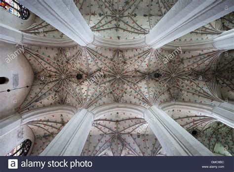 ribbed vault ceiling in torun cathedral interior