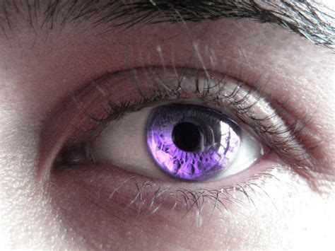 purple eye color best 25 violet eyes ideas on pinterest real purple eyes