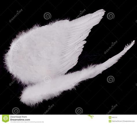 imagenes de alas blancas alas blancas aisladas del 225 ngel en negro imagen de archivo
