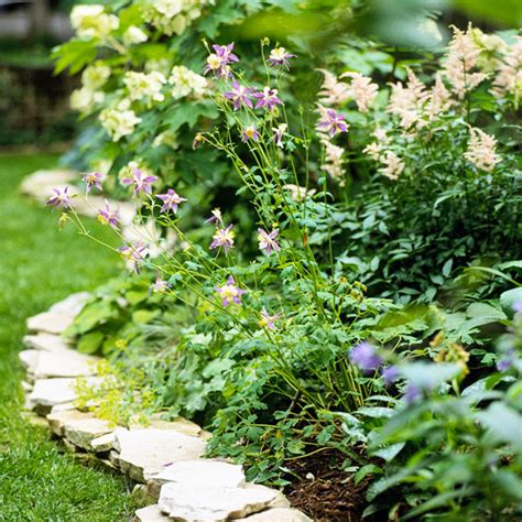 dr dan s garden tips edging options for your beds