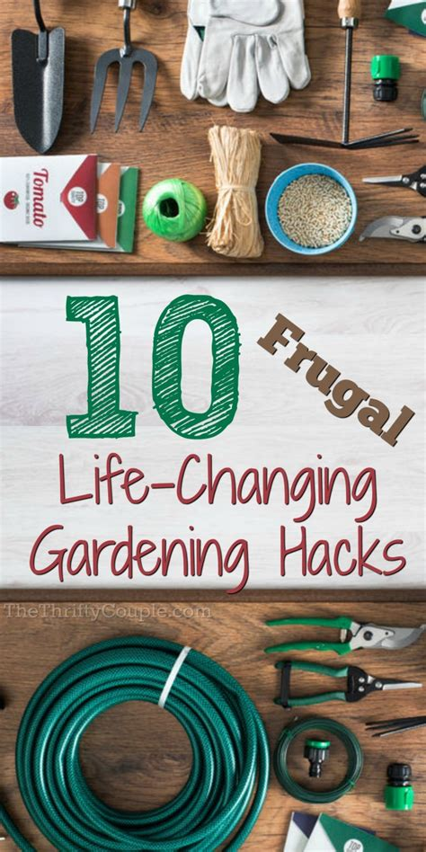 frugal gardening hacks  massively reduce costs