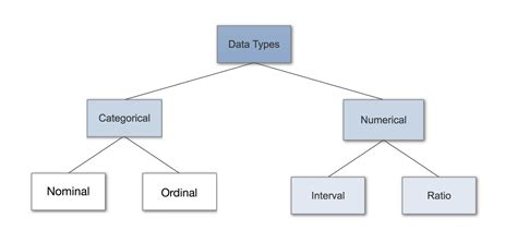 type in data types in statistics towards data science