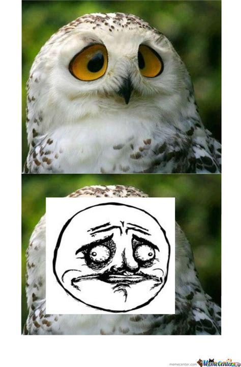 White Owl Meme - not sure gusta owl by slenderman meme center