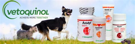 azodyl for dogs vetoquinol