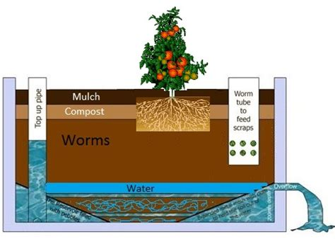 wicking garden bed wicking garden bed design 28 images build a wicking bed growerflow make a wicking