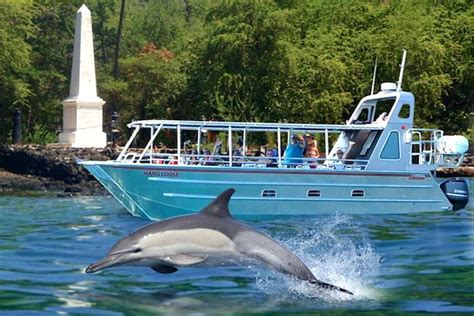catamaran tours big island hawaii big island hawaii sailing trips boat tours getyourguide