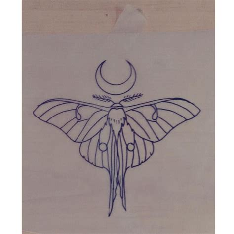 luna tattoo moth drawing by carney design