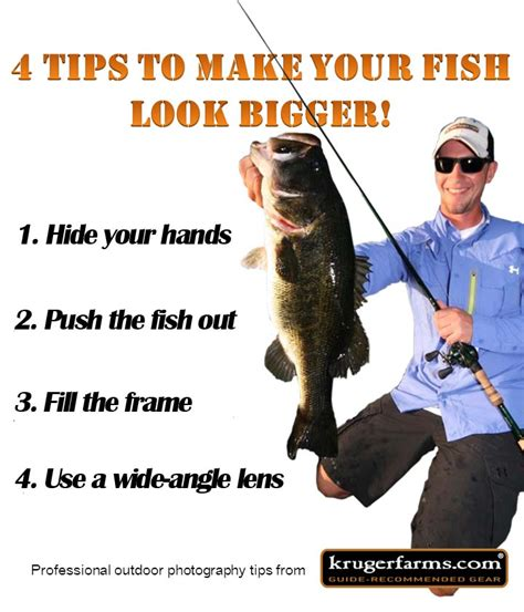 4 Tips To Make Your - 4 tips to make your fish look bigger the