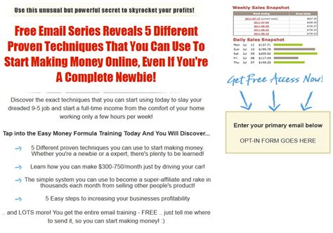 Make Money Online Squeeze Page - make money online plr squeeze page template