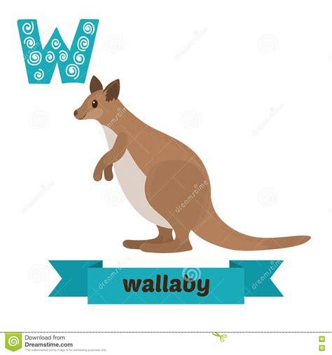 imagenes de animales con w wallaby letra de w alfabeto animal de los ni 241 os lindos en