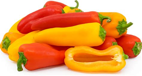 colored peppers bell peppers mix mini sweet information recipes and facts