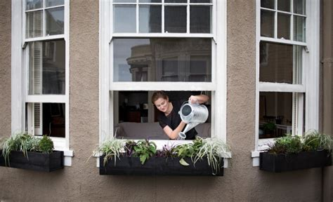 diy window boxes build     perfect fit