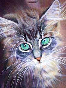 color pencil drawing 30 beautiful cat drawings best color pencil drawings and