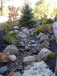 riverbed landscape 1000 ideas about creek bed on creek