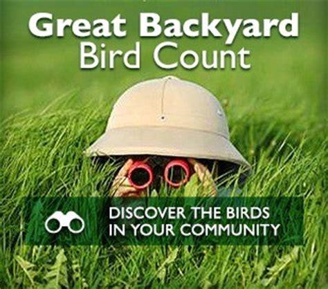 great backyard birdcount 2015 great backyard bird count
