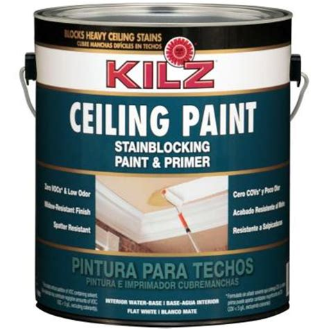 Kilz Bathroom Ceiling Paint by Kilz White Flat 1 Gal Interior Stainblocking Ceiling