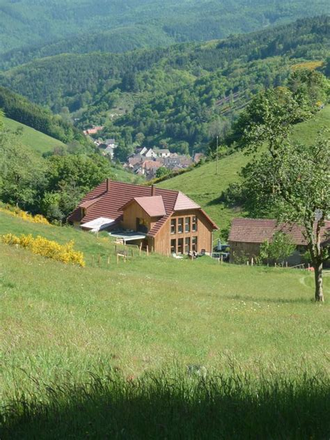cottage in montagna cottage in montagna per 4 persone a rombach le franc 1284243
