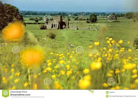 imagenes prados verdes ruina del castillo dentro de prados verdes imagen de