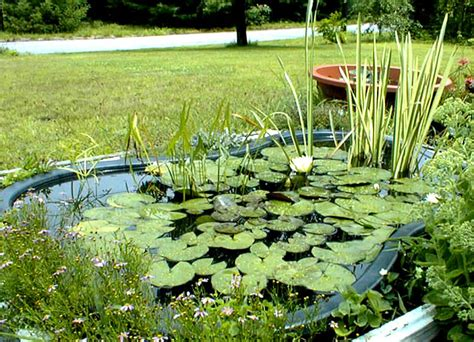 simple backyard ponds simple water gardens
