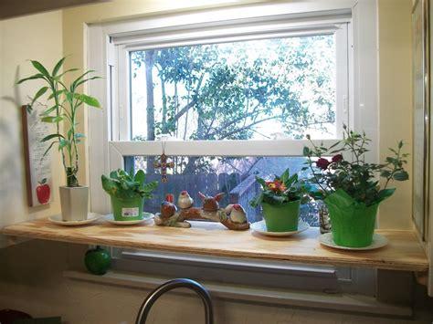 Kitchen Window Plants Kitchen Window Shelf For S Plants By Steve Kreins