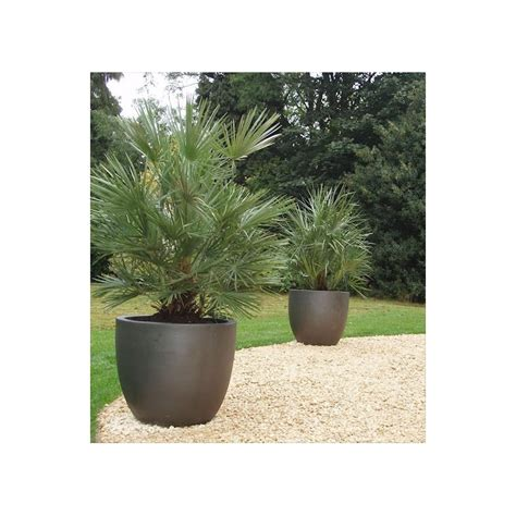 Commercial Flower Planters by Commercial Plant Pots
