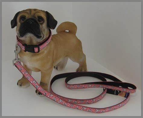 pug collar or harness pered pets vip collars harnesses leashes